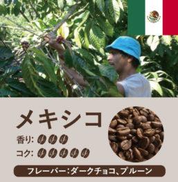 メキシコ産コーヒー豆 サンパブロ