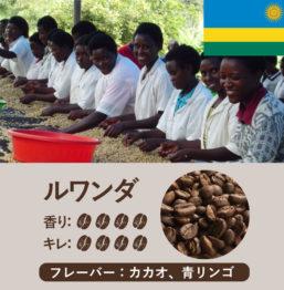 ルワンダ産コーヒー豆 ミコフ