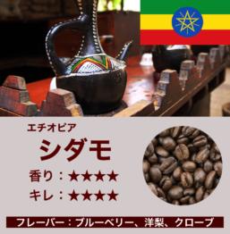 エチオピア産コーヒー豆 シダモ