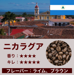 ニカラグア産コーヒー豆